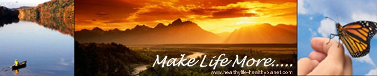 MLM (MakeLifeMore) at HealthyLife-HealthyPlanet